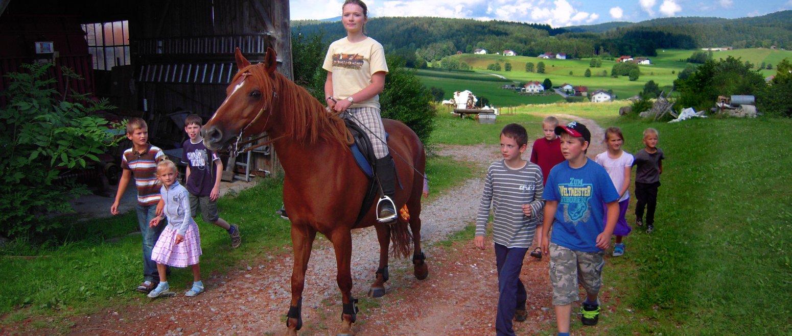 ferienhof-binder-erlebnisurlaub-reiten-niederbayern-reiturlaub