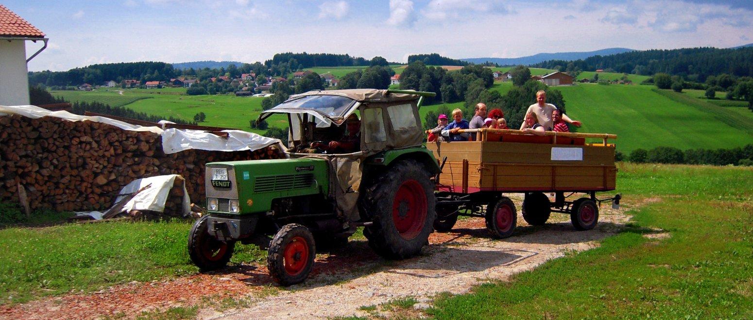 ferienhof-binder-erlebnisurlaub-traktor-fahren-bauernhof